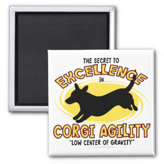 Agility Cardigan Welsh Corgi Secret Magnet