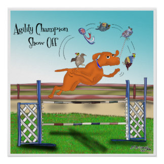 Agility Champion Show Off Poster