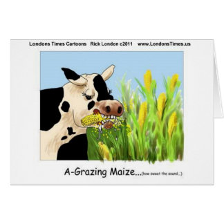 Agrazing Maize (Funny Cow Gifts Cards Tees Etc)