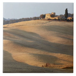 Agricultural field at sunset, Val d'Orcia, Tusca Tile