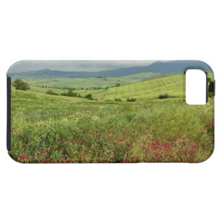 Agricultural field, Tuscany region of Italy. iPhone 5 Cases