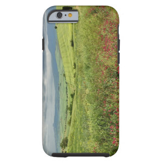 Agricultural field, Tuscany region of Italy. Tough iPhone 6 Case