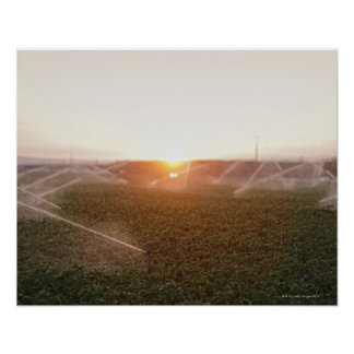Agricultural irrigation system watering poster