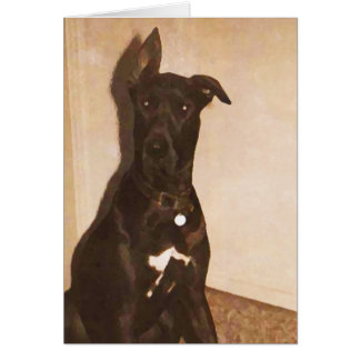 AH- Great Dane Dog Notecards or Greeting cards
