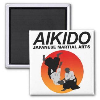 Aikido 3 magnet