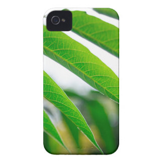 Ailanthus branch with narrow leaves iPhone 4 Case-Mate case