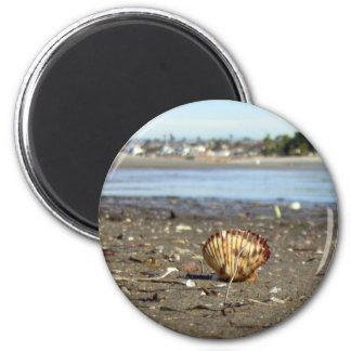 Aimant de plage de coquillage