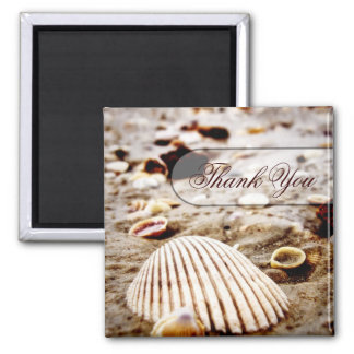Aimant de plage de coquillages de Merci