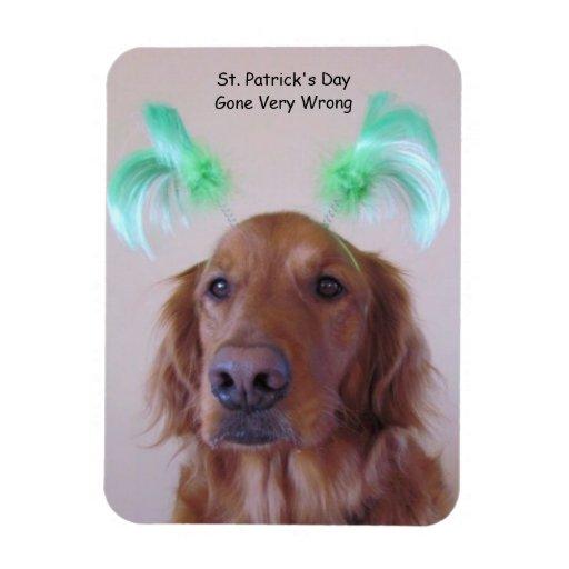 Aimant du jour de St Patrick de golden retriever Magnet En Vinyle