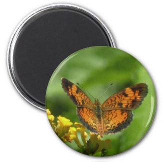 Aimant en croissant de papillon de perle