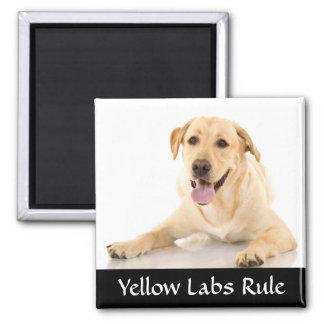Aimant jaune de Labrador Retreiver de règle de l