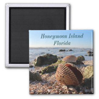 Aimant romantique de coquillages de la Floride d'î
