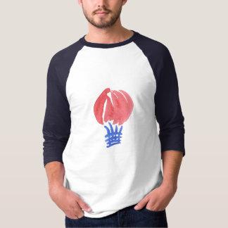 Air Balloon Men's Raglan T-Shirt