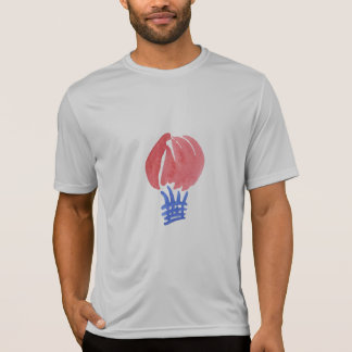 Air Balloon Men's Sports T-Shirt