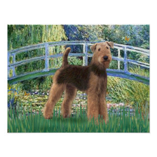 Airedale (#6) - Lily Pond Bridge Poster