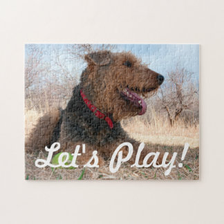 Airedale playing ball in dried grasses jigsaw puzzle