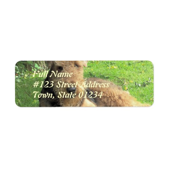 Airedale Terrier Dog Return Address Label