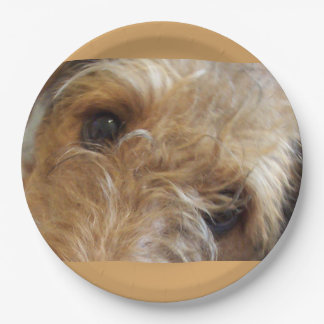 airedale terrier eyes paper plate