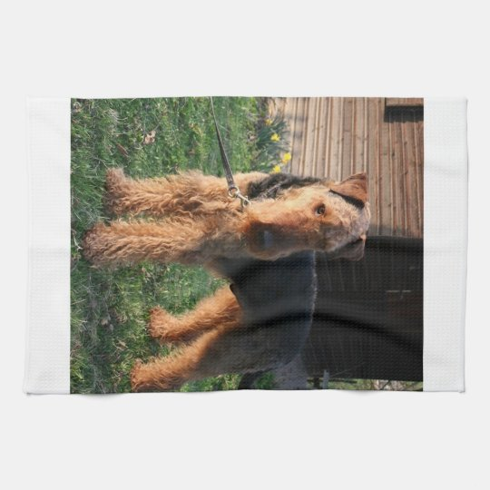 Airedale_Terrier full.png Kitchen Towel
