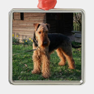 Airedale_Terrier full.png Metal Ornament