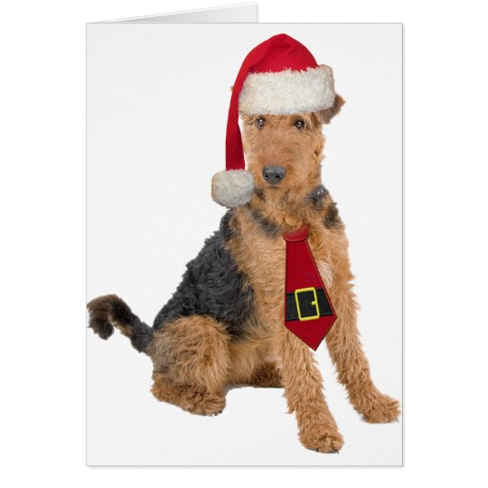 Airedale Terrier In Santa Hat Card