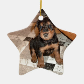 Airedale Terrier Puppy Ceramic Star Ornament