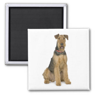 Airedale Terrier Puppy Dog Love Magnet