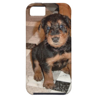 Airedale Terrier Puppy iPhone 5 Cover
