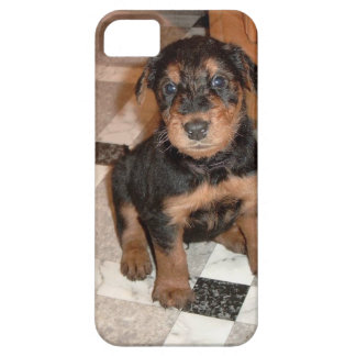 Airedale Terrier Puppy iPhone 5 Covers