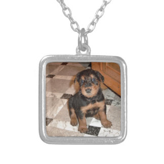 Airedale Terrier Puppy Silver Plated Necklace