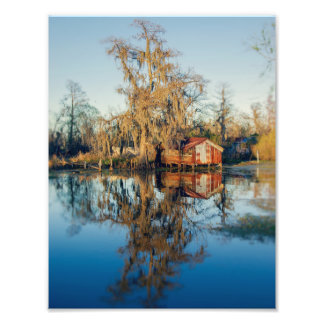Airline Drive Swamps Photo Print