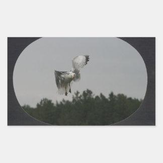 Ajoutez la grande vue ovale de photo le noir autocollants