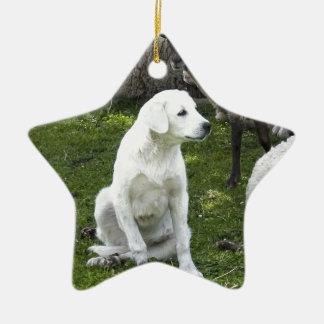 Akbash Dog and Sheep Herd Ceramic Star Ornament