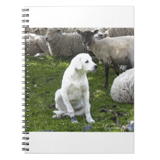 Akbash Dog and Sheep Herd Notebook