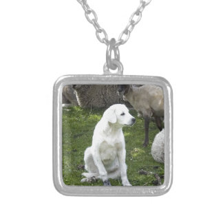 Akbash Dog and Sheep Herd Silver Plated Necklace
