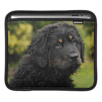 Akbash-herd protection dog iPad sleeve