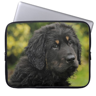 Akbash-herd protection dog laptop sleeve