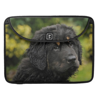 Akbash-herd protection dog sleeve for MacBook pro