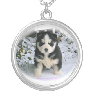 Akcsiberianhuskypups neckless silver plated necklace