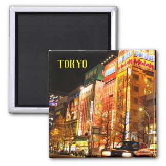 Akihabara (Electric City) in Tokyo, Japan Magnet
