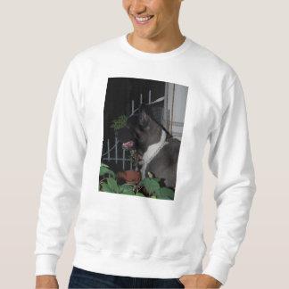 akita 2 sweatshirt