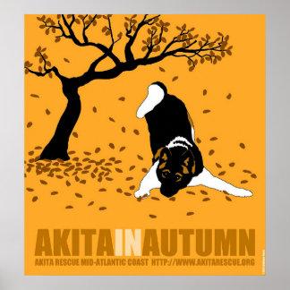 """Akita In Autumn (32"""" x 34.5"""") Poster"""