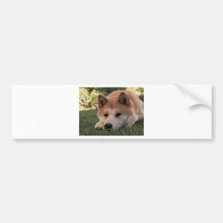 Akita Inu Dog Deep Thoughts Bumper Sticker