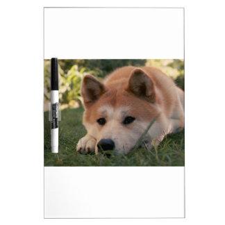 Akita Inu Dog Deep Thoughts Dry Erase Board