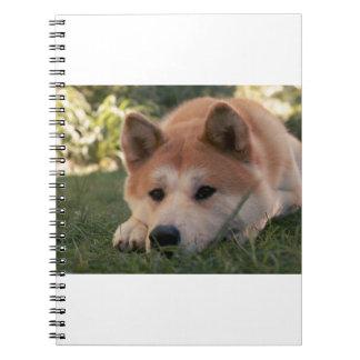 Akita Inu Dog Deep Thoughts Spiral Notebook