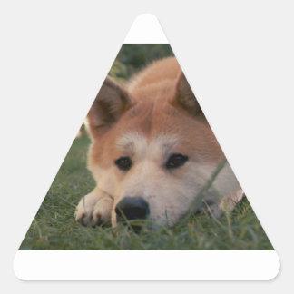 Akita Inu Dog Deep Thoughts Triangle Sticker