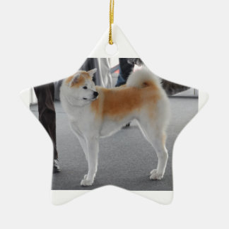 Akita Inu Dog In A Dog Show Ceramic Ornament
