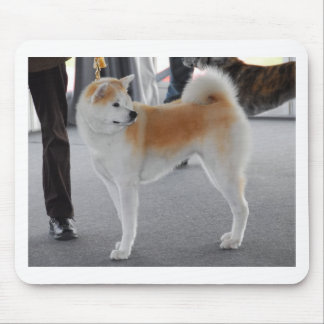 Akita Inu Dog In A Dog Show Mouse Pad