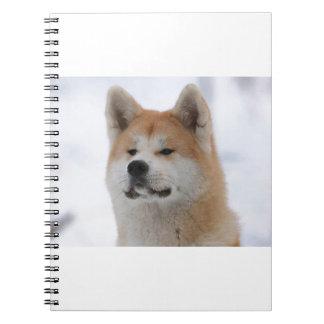 Akita Inu Dog Looking Serious Spiral Note Book
