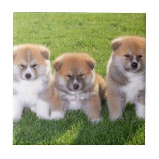 Akita Inu Dog Puppies Ceramic Tiles